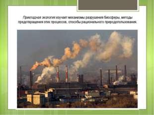 Прикладная экология изучает механизмы разрушения биосферы, методы предотвраще