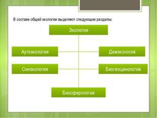 В составе общей экологии выделяют следующие разделы: Экология Аутоэкология Си