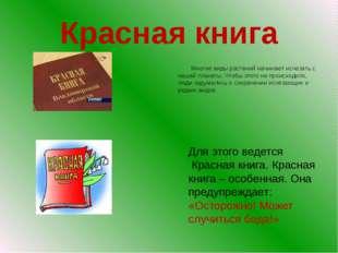 Красная книга Многие виды растений начинают исчезать с нашей планеты. Чтобы
