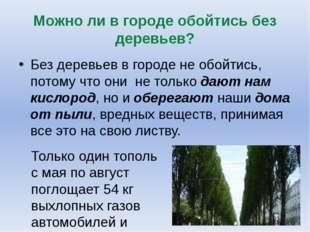 Можно ли в городе обойтись без деревьев? Без деревьев в городе не обойтись, п