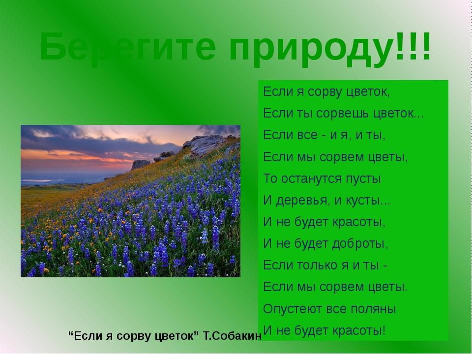 Берегите природу!!! Если я сорву цветок, Если ты сорвешь цветок... Если все -...