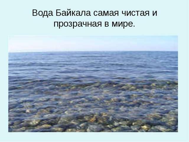 Вода Байкала самая чистая и прозрачная в мире.