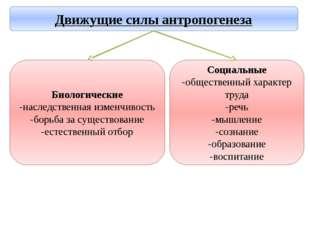 Социальные -общественный характер труда -речь -мышление -сознание -образовани