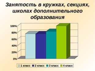 Занятость в кружках, секциях, школах дополнительного образования