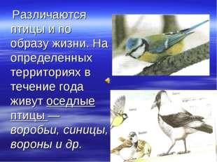 Различаются птицы и по образу жизни. На определенных территориях в течение г