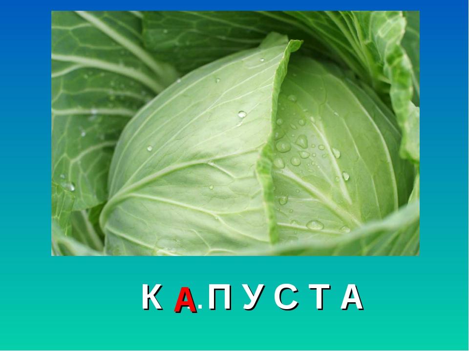 К …П У С Т А А