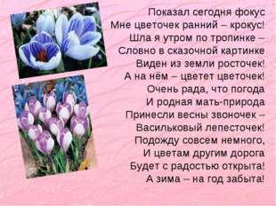 Показал сегодня фокус Мне цветочек ранний – крокус! Шла я утром по тропинке –