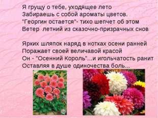 """Я грущу о тебе, уходящее лето Забираешь с собой ароматы цветов. """"Георгин оста"""