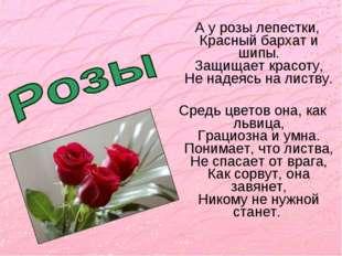 А у розы лепестки, Красный бархат и шипы. Защищает красоту, Не надеясь на ли