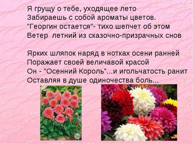 """Я грущу о тебе, уходящее лето Забираешь с собой ароматы цветов. """"Георгин оста..."""