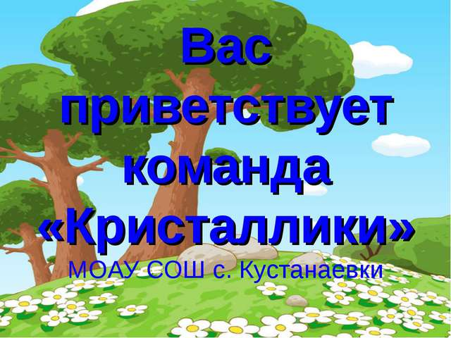Вас приветствует команда «Кристаллики» МОАУ СОШ с. Кустанаевки