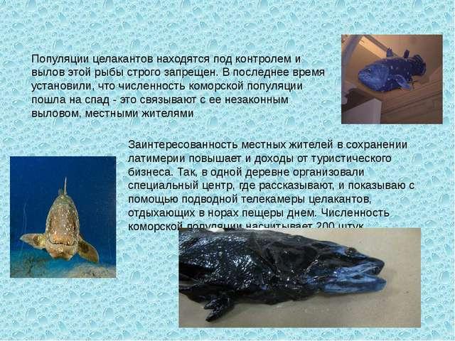 Популяции целакантов находятся под контролем и вылов этой рыбы строго запреще...