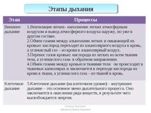 Этапы дыхания Учитель биологии Деулина Ирина Юрьевна ЭтапПроцессы Внешнее ды
