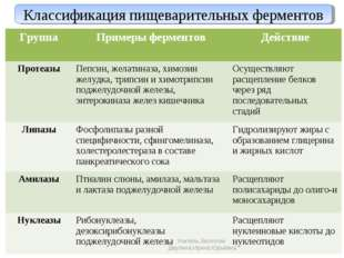 Классификация пищеварительных ферментов Учитель биологии Деулина Ирина Юрьевн