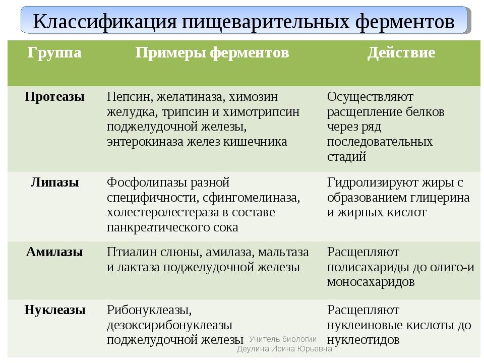 Классификация пищеварительных ферментов Учитель биологии Деулина Ирина Юрьевн...