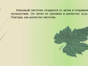 Кленовый листочек оторвался от ветки и отправился в путешествие. Он летел по