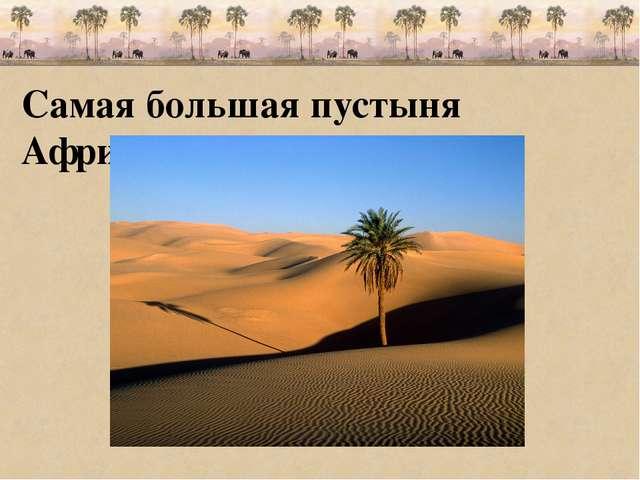 Самая большая пустыня Африки