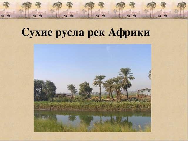 Сухие русла рек Африки
