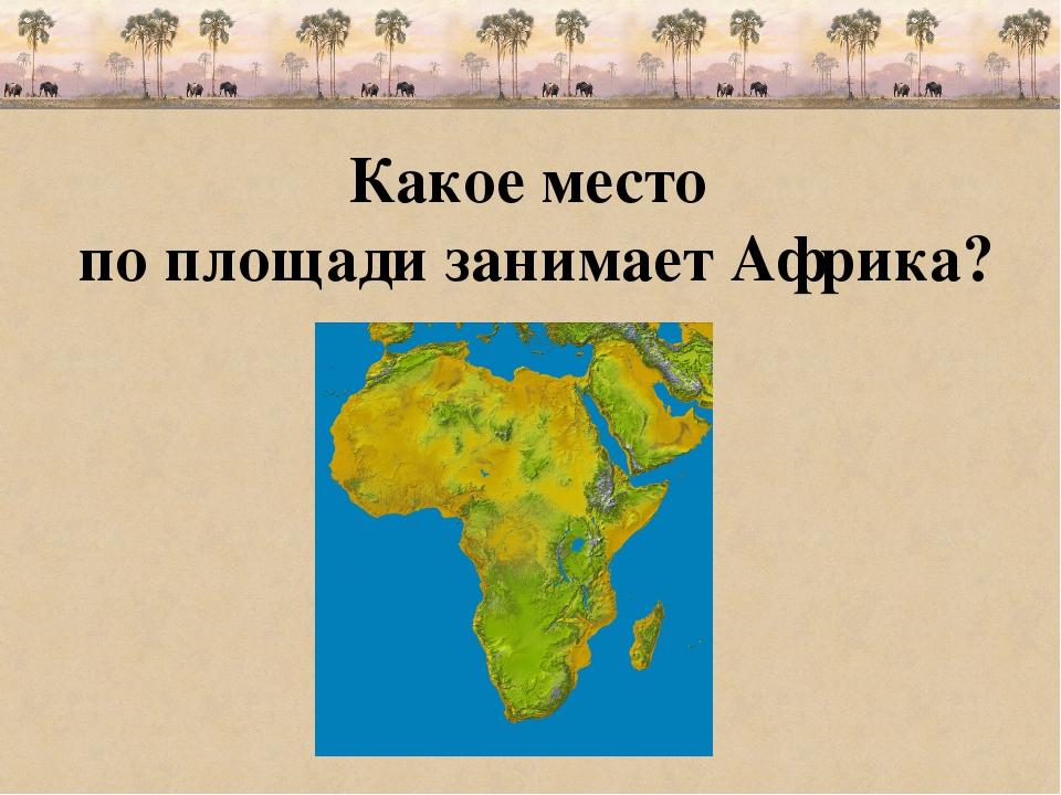 Какое место по площади занимает Африка?