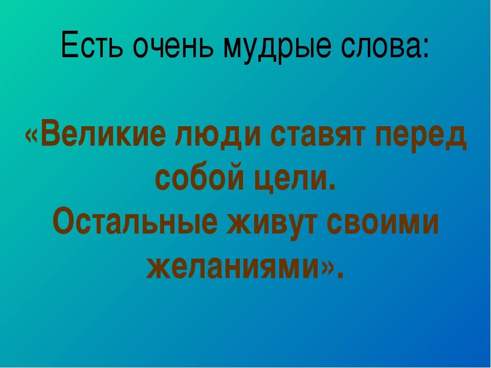 Есть очень мудрые слова: «Великие люди ставят перед собой цели. Остальные жив...