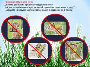 Правила поведения в лесу. Давайте вспомним правила поведения в лесу. Как мы м