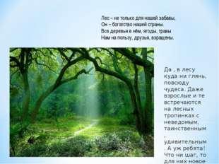 Лес – не только для нашей забавы, Он – богатство нашей страны. Все деревья в
