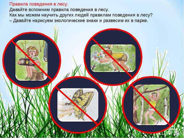 Правила поведения в лесу. Давайте вспомним правила поведения в лесу. Как мы м...