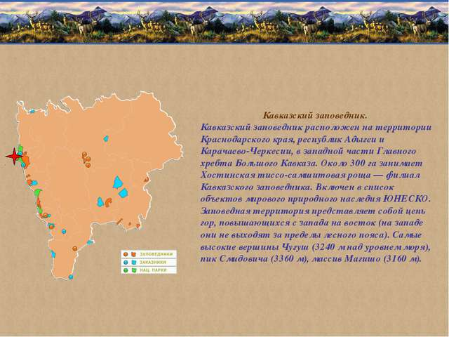 Кавказский заповедник. Кавказский заповедник расположен на территории Краснод...