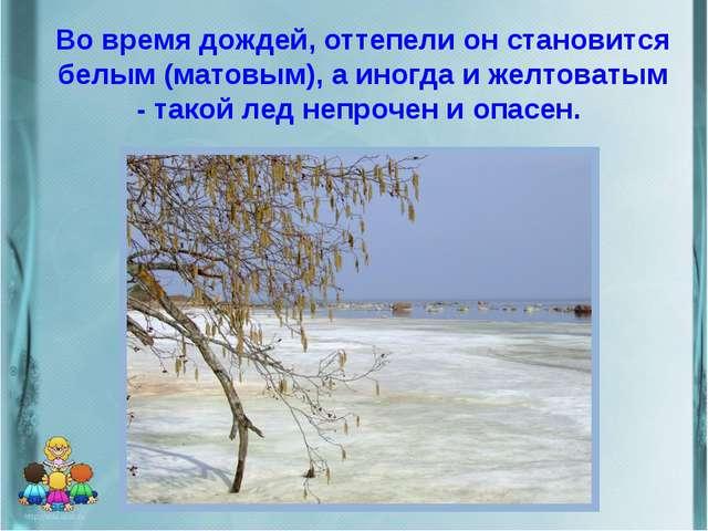 Во время дождей, оттепели он становится белым (матовым), а иногда и желтоваты...