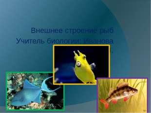 Внешнее строение рыб Учитель биологии: Иванова Н.Л.
