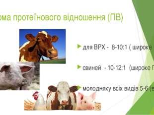 Норма протеїнового відношення (ПВ) для ВРХ - 8-10:1 ( широке ПВ) свиней - 10-