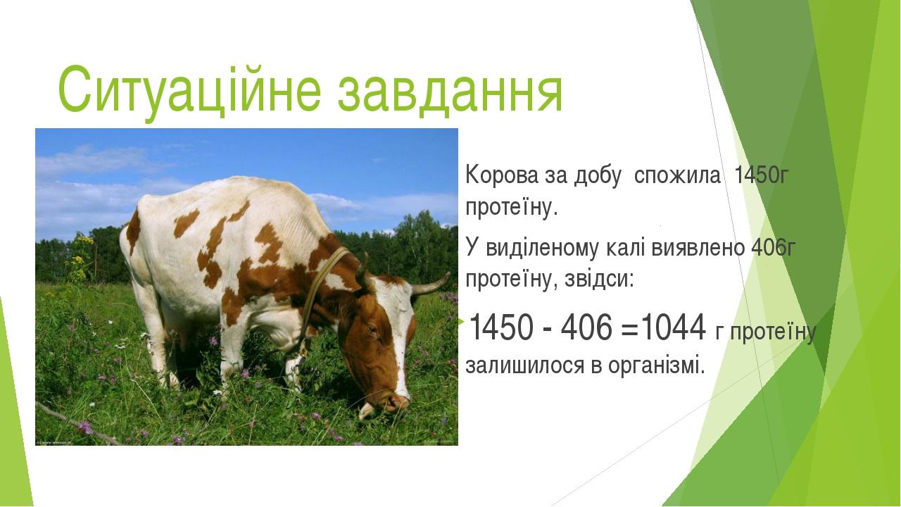 Ситуаційне завдання Корова за добу спожила 1450г протеїну. У виділеному калі...