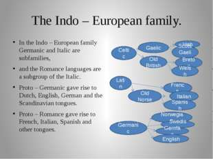 The Indo – European family. In the Indo – European family Germanic and Italic