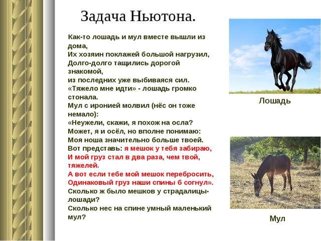 Задача Ньютона. Как-то лошадь и мул вместе вышли из дома, Их хозяин пок...