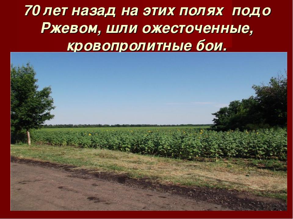 70 лет назад на этих полях подо Ржевом, шли ожесточенные, кровопролитные бои.