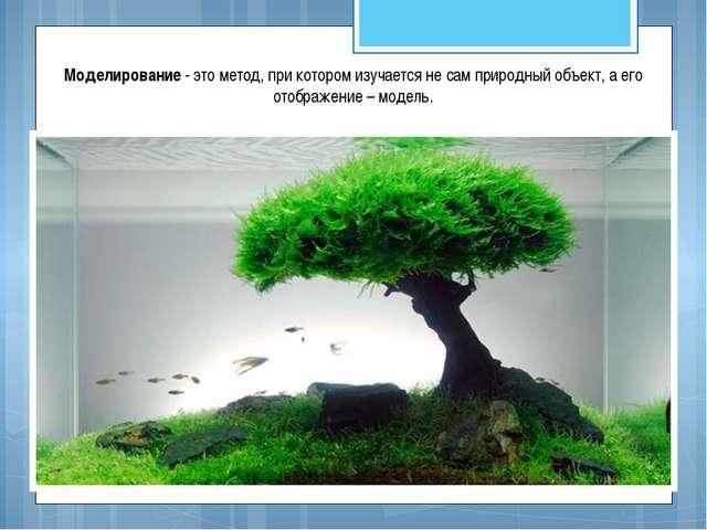 Моделирование - это метод, при котором изучается не сам природный объект, а е...