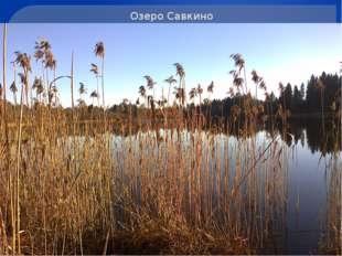 Озеро Савкино