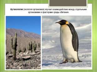 Аутэкология (экология организмов) изучает взаимодействие между отдельными орг
