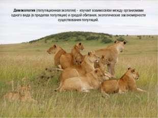 Демэкология (популяционная экология) - изучает взаимосвязи между организмами