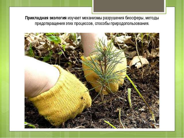 Прикладная экология изучает механизмы разрушения биосферы, методы предотвраще...