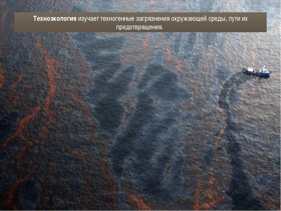 Техноэкология изучает техногенные загрязнения окружающей среды, пути их предо...