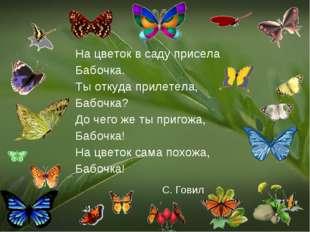 На цветок в саду присела Бабочка. Ты откуда прилетела, Бабочка? До чего же ты
