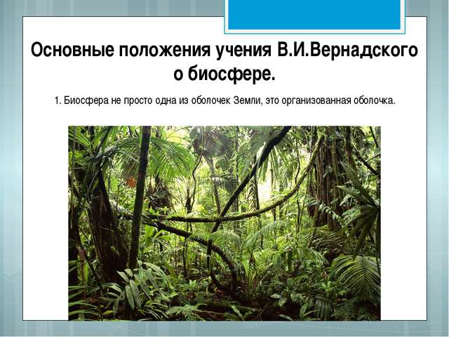 Основные положения учения В.И.Вернадского о биосфере. 1. Биосфера не просто о...