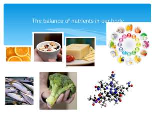 The balance of nutrients in our body