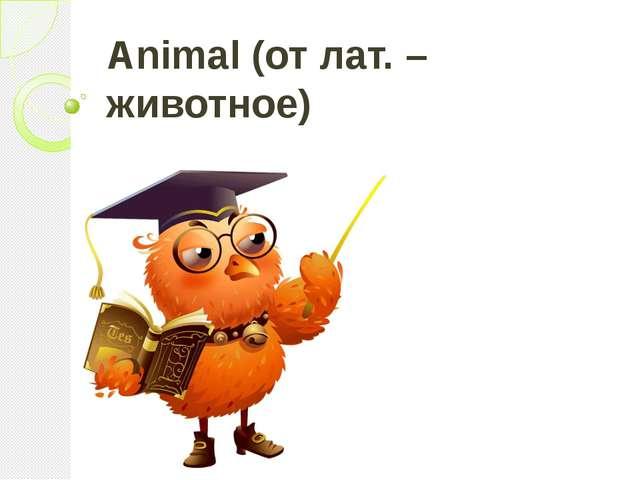 Animal (от лат. – животное)
