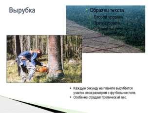 Вырубка Каждую секунду на планете вырубается участок леса размером с футбольн
