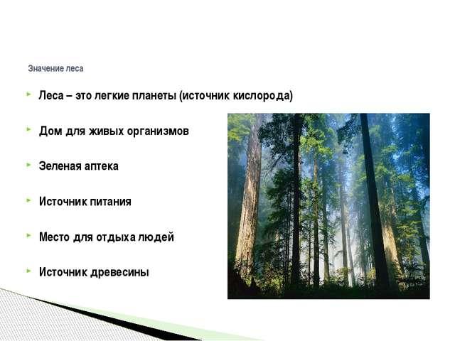 Леса – это легкие планеты (источник кислорода) Дом для живых организмов Зелен...