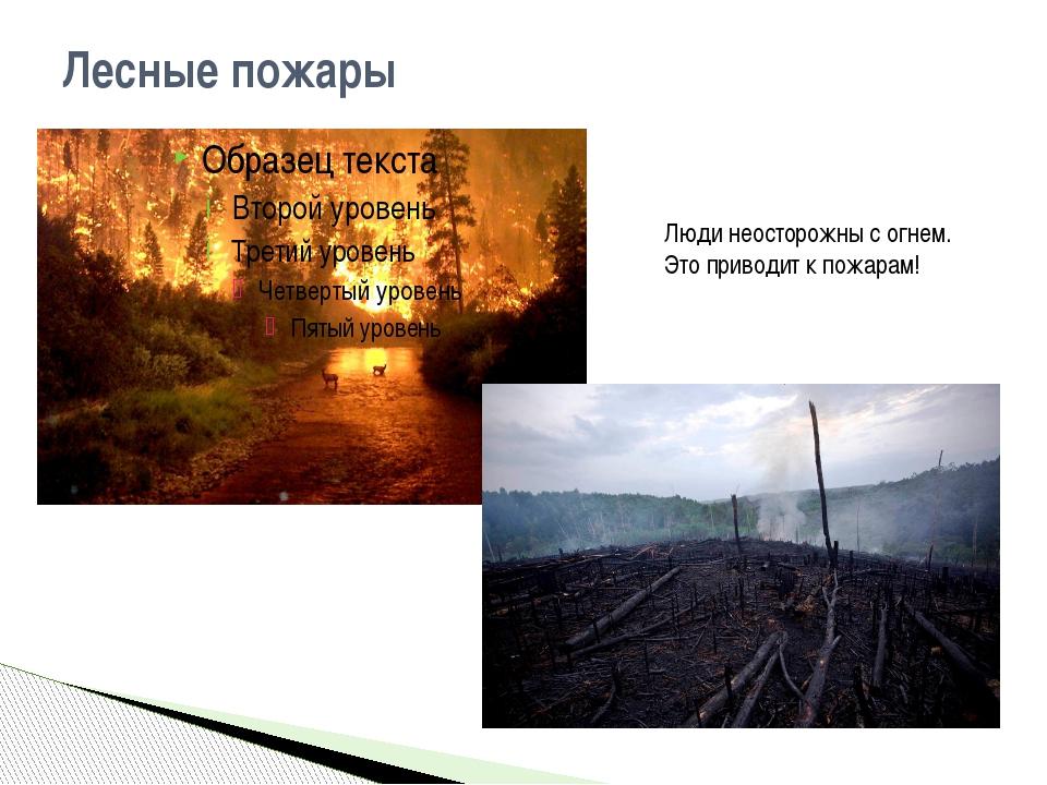 Лесные пожары Люди неосторожны с огнем. Это приводит к пожарам!