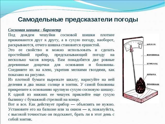 Самодельные предсказатели погоды Сосновая шишка - барометр Под дождем чешуйки...