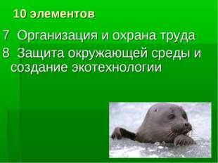 10 элементов 7 Организация и охрана труда 8 Защита окружающей среды и создани